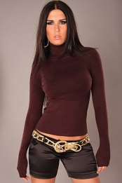 Brown Sexy Turtleneck Pullover